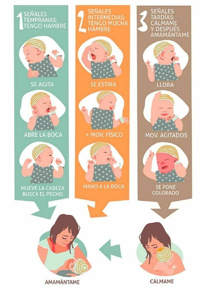 Señales de hambre del recién nacido